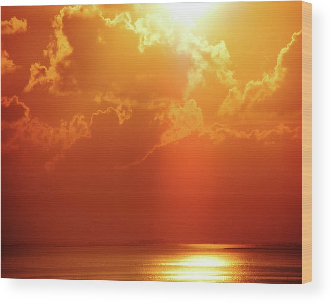 Sunset Wood Print featuring the digital art Sunset Near Venice La by Lizi Beard-Ward
