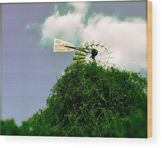 Wood Print featuring the photograph The Aermoter by Amber Hennessey