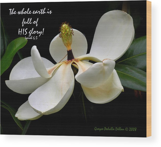 Magnolia Wood Print featuring the photograph The Whole Earth Is Filled With His Glory by Grace Dillon