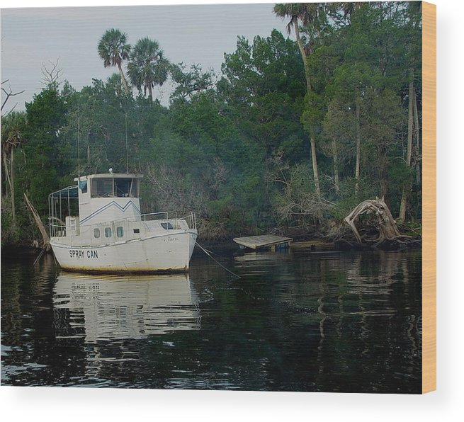 Steinhatchee Wood Print featuring the painting The Spray Can by Debbie May