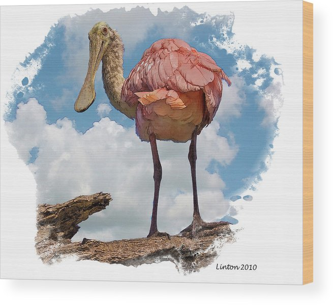 Roseate Spoonbill Wood Print featuring the digital art Roseate Spoonbill by Larry Linton