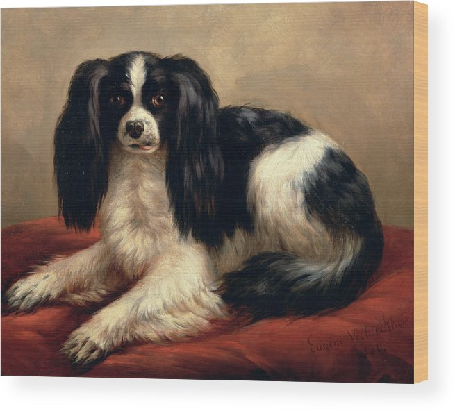 A King Charles Spaniel Seated On A Red Cushion Wood Print featuring the painting A King Charles Spaniel Seated On A Red Cushion by Eugene Joseph Verboeckhoven