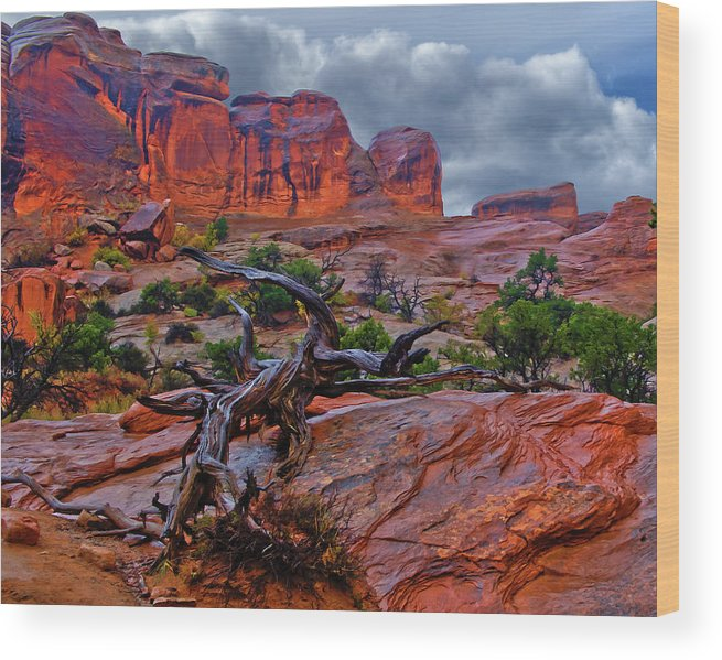 Arches Wood Print featuring the photograph Arches National Park Rain by Kenneth Eis