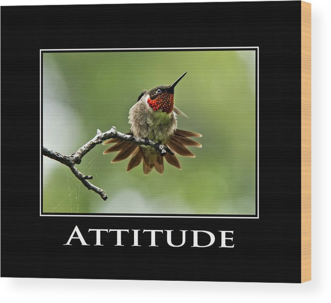Attitude Wood Print featuring the photograph Attitude Inspirational Motivational Poster Art by Christina Rollo