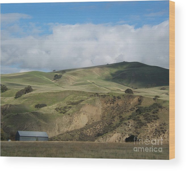 Artoffoxvox Wood Print featuring the photograph California Countryside Photograph by Kristen Fox