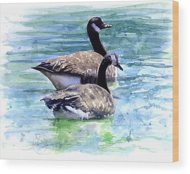 Canada Wood Print featuring the painting Canada Geese by John D Benson