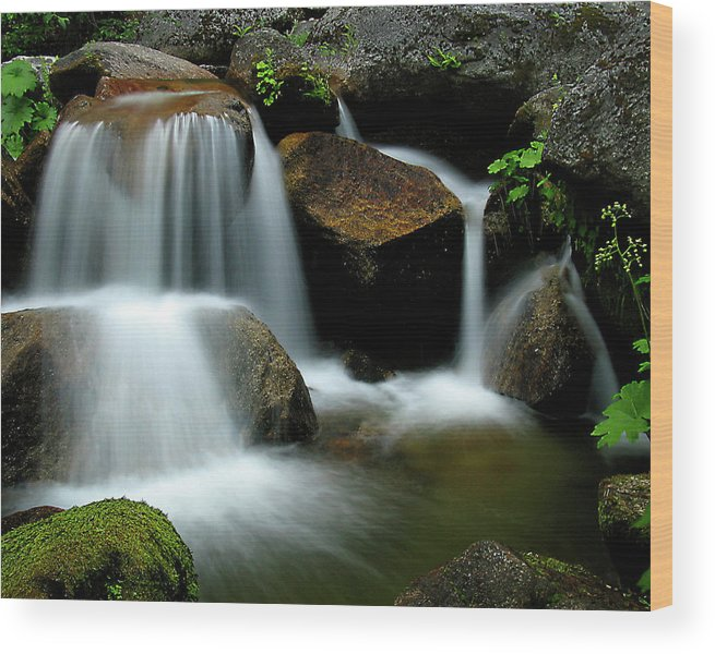 Landscape Wood Print featuring the photograph Cascade Creek Yosemite by Joe Palermo