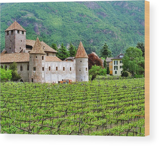 Castle Wood Print featuring the photograph Castle And Vineyard In Italy by Greg Matchick