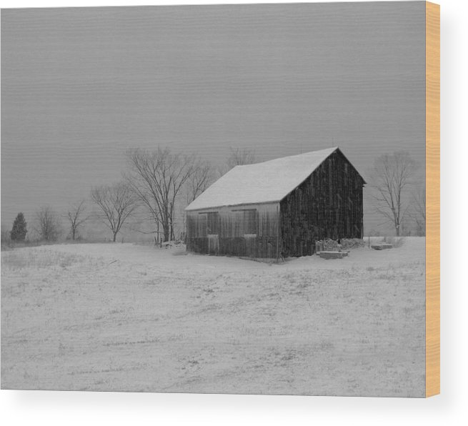 Nature Wood Print featuring the photograph Cold Winter Night by Martie DAndrea