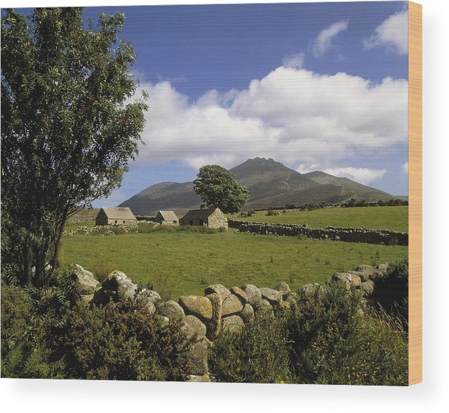 Scenery Wood Print featuring the photograph Cottages On A Farm Near The Mourne by The Irish Image Collection