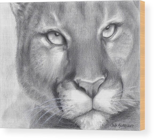 Cougar Wood Print featuring the drawing Cougar Spirit by Carla Kurt