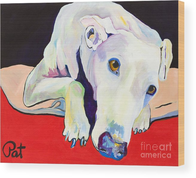 Animals Pets Greyhound Wood Print featuring the painting Cyrus by Pat Saunders-White
