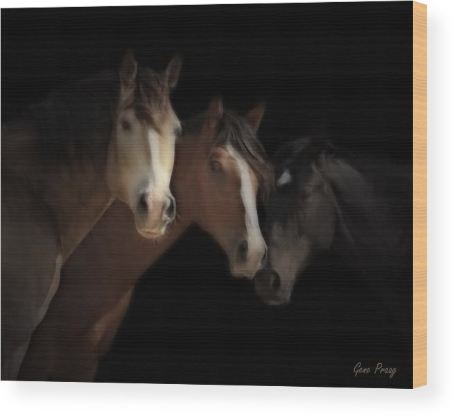 Mustang Wood Print featuring the photograph Desert Ghosts by Gene Praag