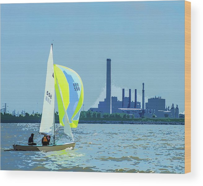 Cattail Wood Print featuring the photograph Downwind by Michael Arend