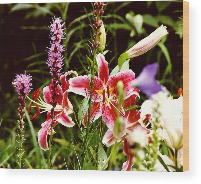 Flowers Wood Print featuring the photograph Fancy Lilies In Garden by Roger Soule