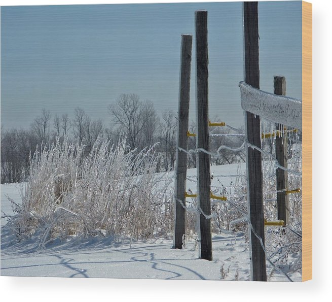 Weather Wood Print featuring the photograph Fence Posts In Ice by Martie DAndrea