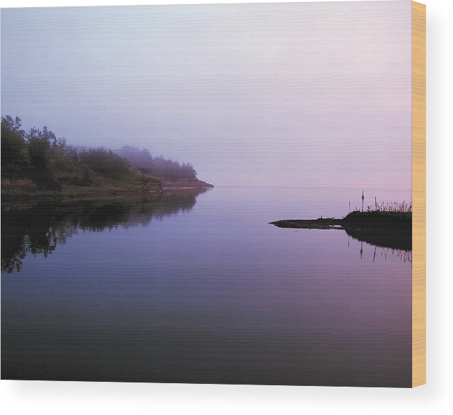 Sunrise Wood Print featuring the photograph Flannery Bay Sunrise by Ralph Steinhauer