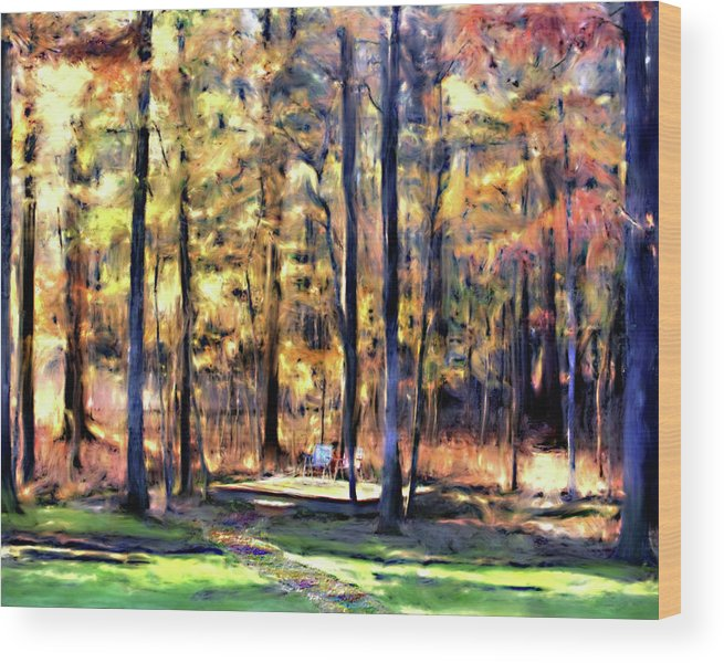Forest Wood Print featuring the digital art Forest Deck by Shirley Dawson