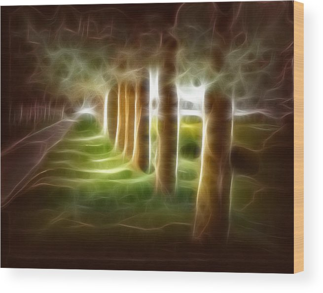 Evening Landcape Wood Print featuring the digital art Glowing Forest by Carola Ann-Margret Forsberg