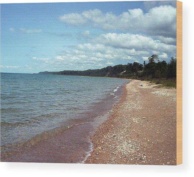 Stoney Beach Wood Print featuring the photograph Great Lakes Beach by Jennifer Englehardt