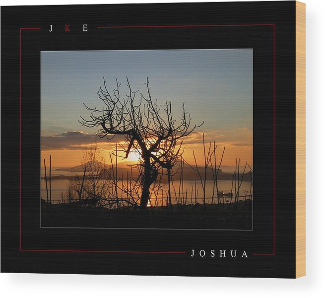 Tree Wood Print featuring the photograph Joshua by Jonathan Ellis Keys