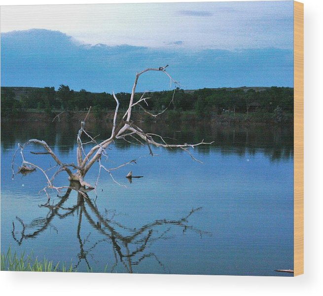 Landscape Wood Print featuring the photograph Lake Fryer Tree by Val Conrad