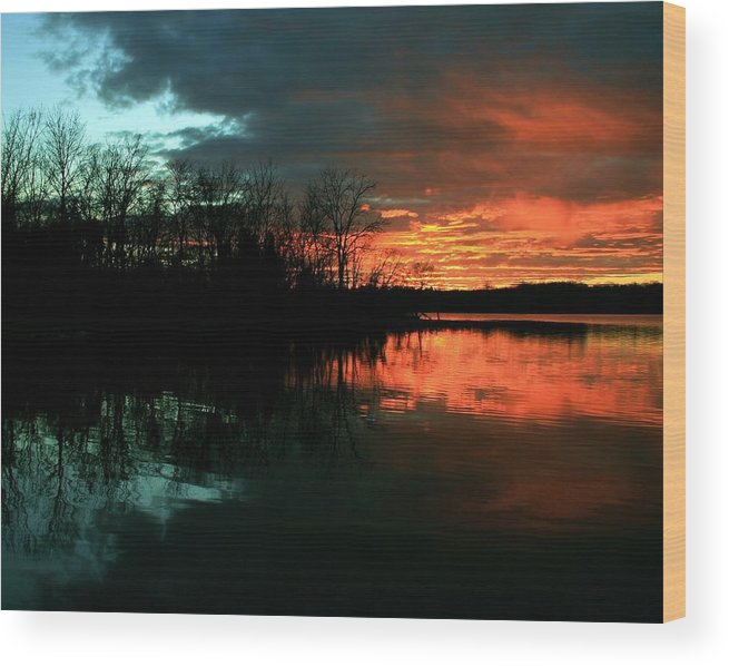 Landscape Wood Print featuring the photograph Life by Mitch Cat
