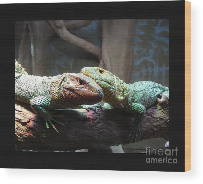 Lizzards Wood Print featuring the photograph Love Lizz by David Carter