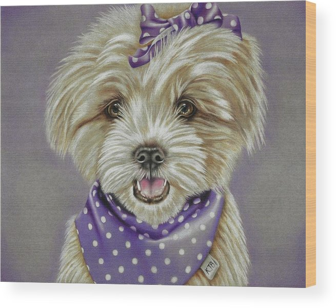Dog Wood Print featuring the drawing Molly The Maltese by Karrie J Butler