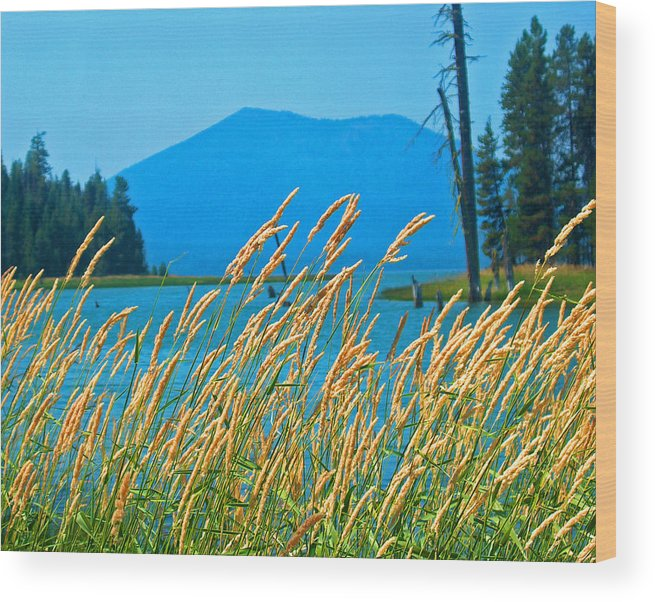 Nature Wood Print featuring the photograph Mt. Bachelor by Dorota Nowak