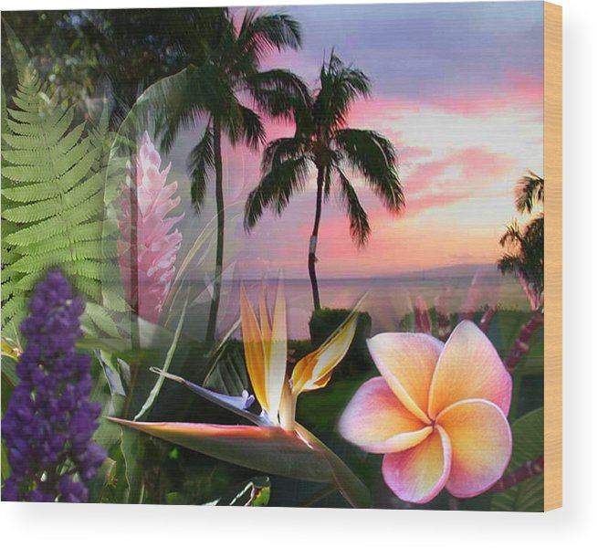 Bird Of Paradise Wood Print featuring the photograph Natural Beauty by Angie Hamlin