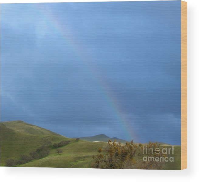 Artoffoxvox Wood Print featuring the photograph Rainbow Country Photograph by Kristen Fox