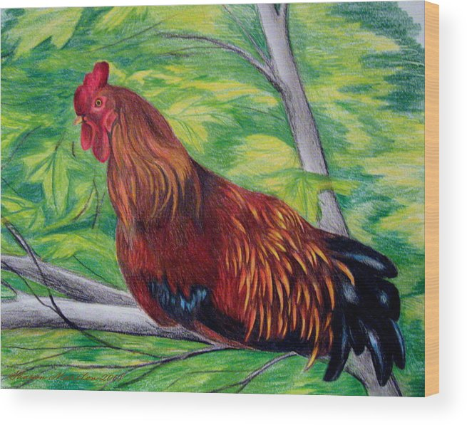 Rooster Wood Print featuring the drawing Roosting by Sharon Marcella Marston