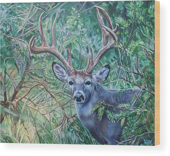 Deer Wood Print featuring the painting South Texas Deer In Thick Brush by Diann Baggett