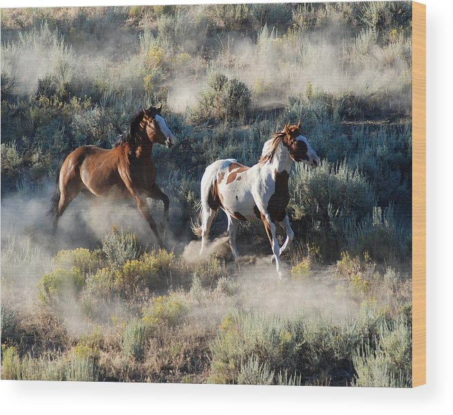Horses Wood Print featuring the photograph Two Horses Running by JOANNE McCubrey