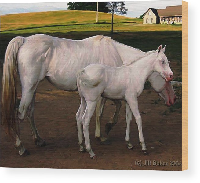 White Horses Wood Print featuring the painting White Baby Horse by Jill Baker