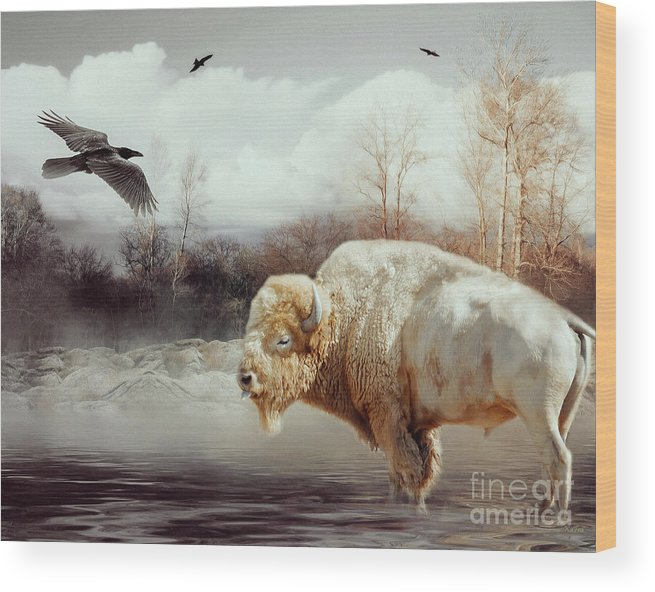 White Buffalo Wood Print featuring the mixed media White Buffalo And Raven by KaFra Art