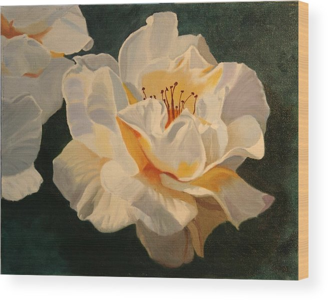 Floral Wood Print featuring the painting White Rose by Robert Tower