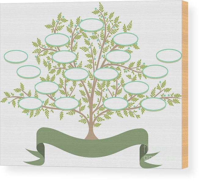 Parent Wood Print featuring the digital art Vector Family Tree With Blank Spaces To by Tomacco