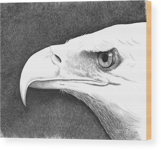 Pen Wood Print featuring the painting Bald Eagle 2 by Judy Horan