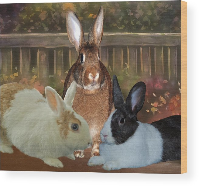Animals Wood Print featuring the photograph Bindy Bella And Butterscotch by Diane Bell