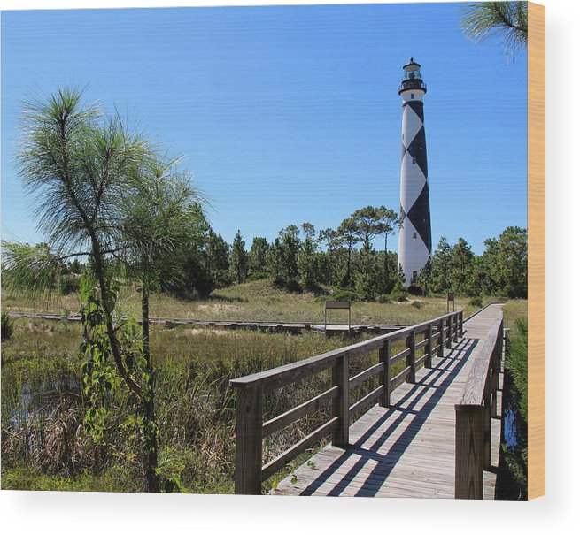 Cape Lookout Wood Print featuring the photograph Cape Lookout Walk Way by Rand Wall