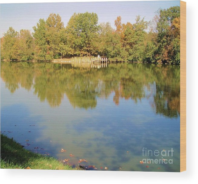 Nature Wood Print featuring the photograph Natural Reflections by Tahlula Arts