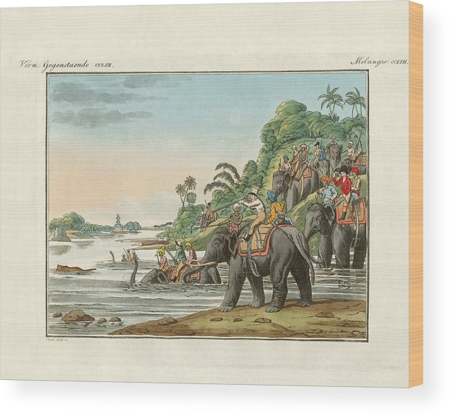 Bertuch Wood Print featuring the drawing Tiger Hunting On An Indian River by Splendid Art Prints