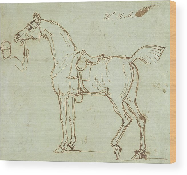 Horse Wood Print featuring the drawing A Racehorse, Bridled And Saddled by James Seymour