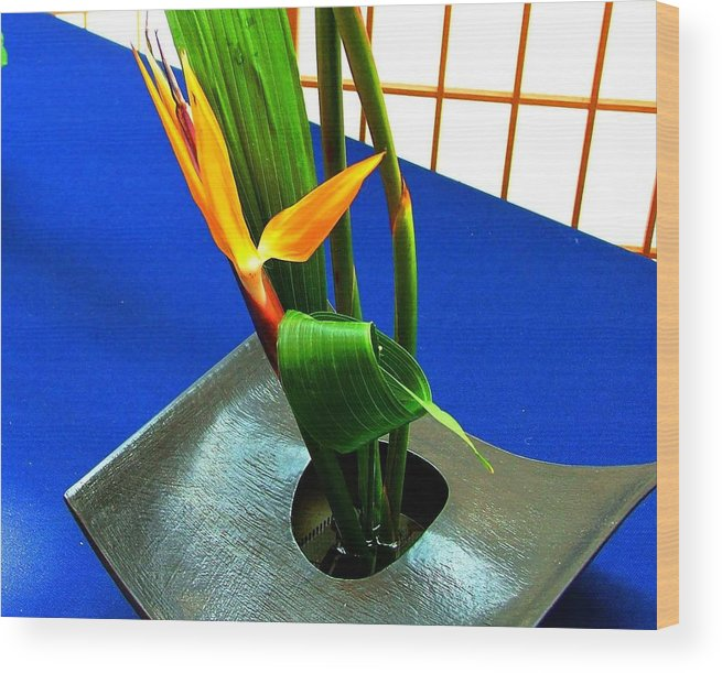 Bird Of Paradise Wood Print featuring the photograph Bird Of Paradise On Blue by Mindy Newman