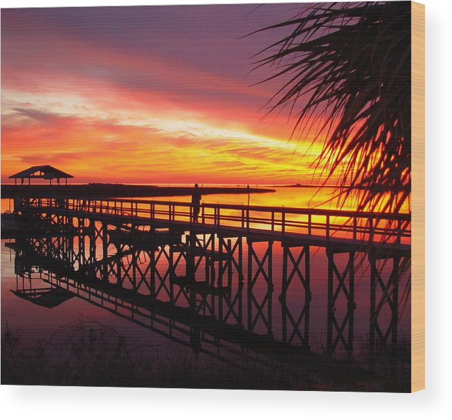 Palms Wood Print featuring the photograph Docking It by Debbie May