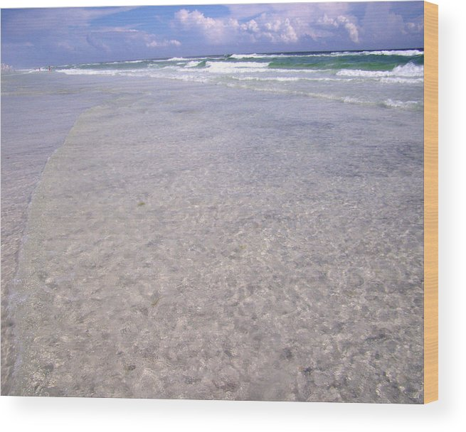Water Wood Print featuring the photograph Gulf Shore by Nicole I Hamilton