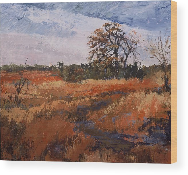 Landscape Wood Print featuring the painting Typical Texas Field by Jimmie Trotter