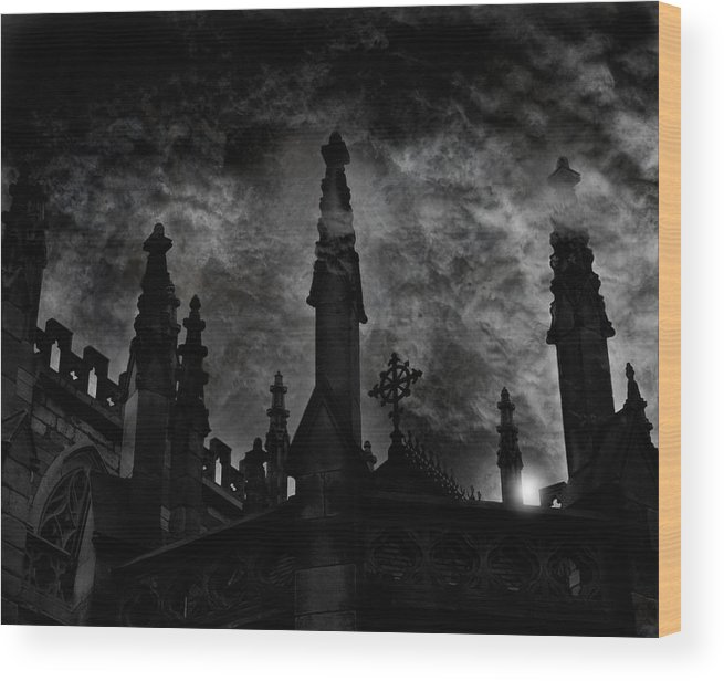 Photography Wood Print featuring the photograph Revival by David Fox